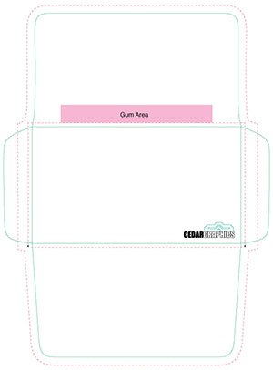 Envelope Template Download  Adobe Indesign And Pdf Setup Layout